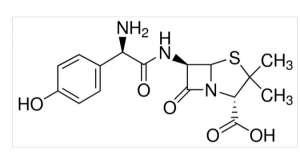 Amoxicillin 1g Sigma