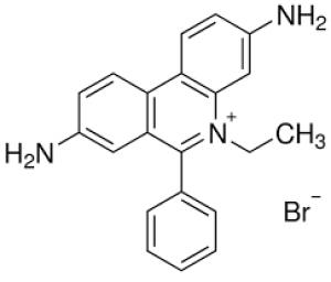 Ethidium™ Bromide, for Electrophoresis 5g Fisher