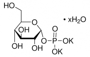 Glucose-1-Phosphoric Acid, Dipotassium Salt Dihydrate 2g Fisher