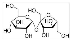 Sucrose BioXtra 1kg Sigma