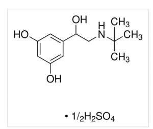 Terbutaline hemisulfate salt 1g Sigma