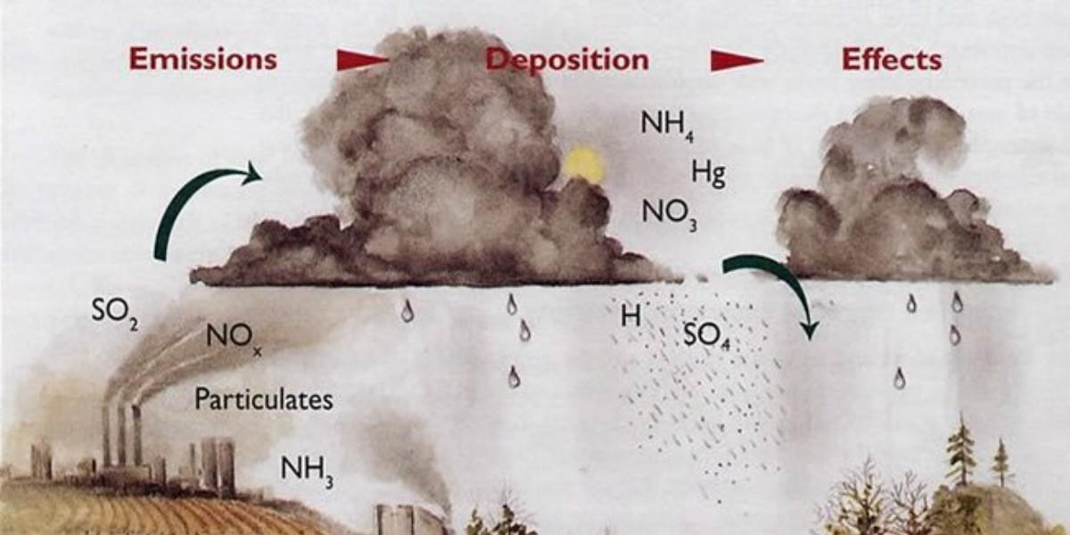 Khí SO2 gây hiện tượng mưa axit