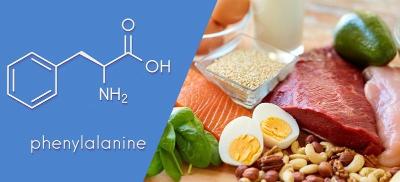 Phenylalanine là tiền chất của nhiều chất dẫn truyền thần kinh