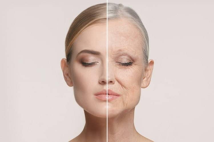 Làm chậm quá trình lão hóa