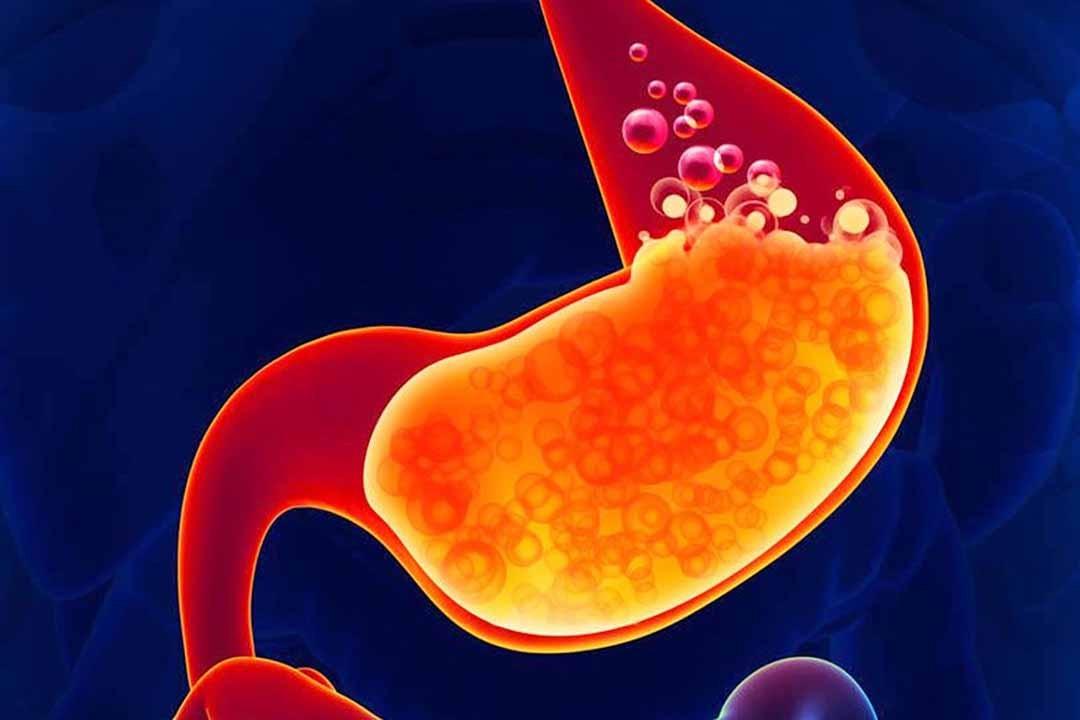 Axit clohidric có trong dịch vị dạ dày