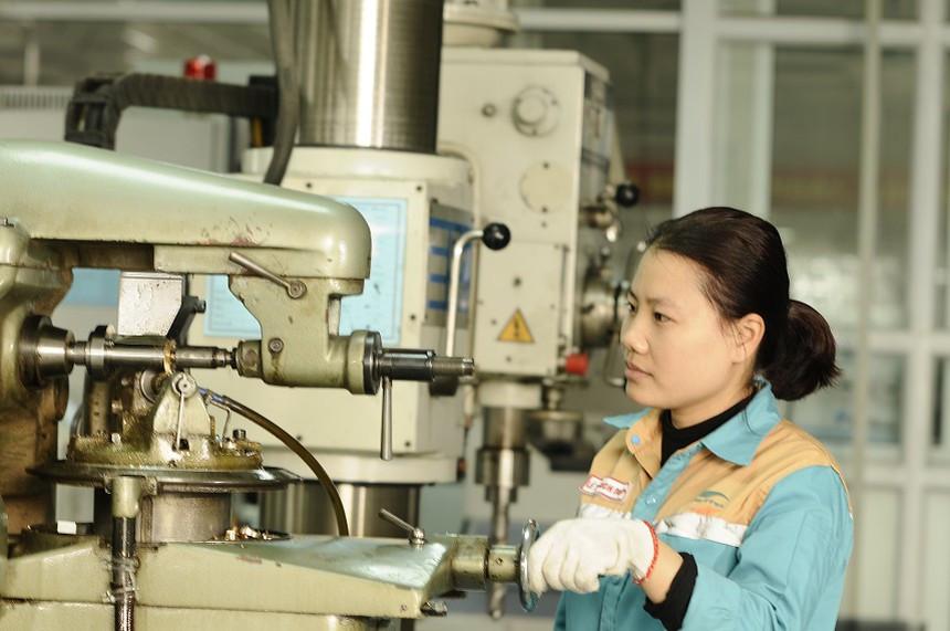 Công bố xếp hạng Top 500 doanh nghiệp Việt Nam thịnh vượng 2019