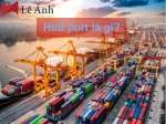 hub port là gì