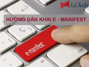 hướng dẫn khai e-manifest